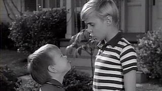 Dennis the Menace Season 4 Episode 37
