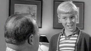 Watch Dennis the Menace Season 4 Episode 34 - The Lucky Rabbit's F... Online