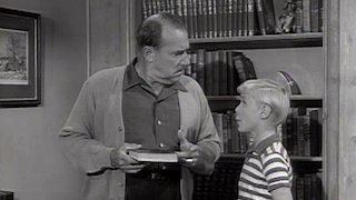 Watch Dennis the Menace Season 4 Episode 36 - First Editions Online