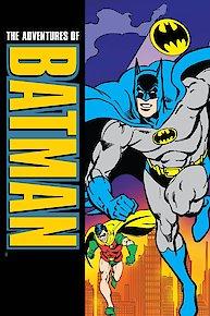 The Adventures of Batman & Robin