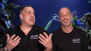 Watch Tanked Season 13 Episode 5 - Shark Tank in the Sh...Online