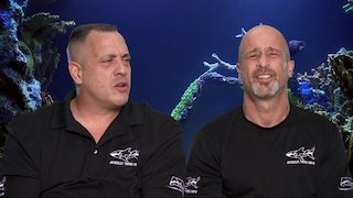Watch Tanked Season 13 Episode 9 - This Tank Is Ludacis...Online