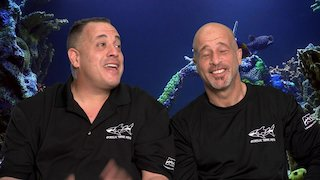 Watch Tanked Season 13 Episode 10 - Napping With The Fis...Online