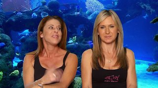 Watch Tanked Season 11 Episode 21 - We Fish You a Merry ...Online