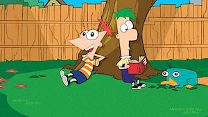 Watch Phineas and Ferb Season 4 Episode 28 - Imperfect Storm Online