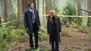 Watch The X-Files Season 11 Episode 6 - Kitten Online