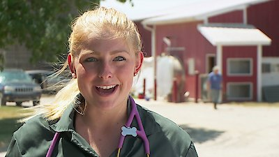 Watch The Incredible Dr  Pol Online - Full Episodes - All