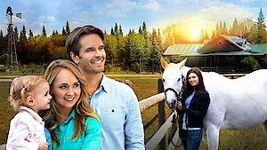 Watch Heartland Online Full Episodes All Seasons Yidio