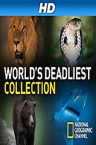 World's Deadliest Collection
