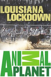 Louisiana Lockdown
