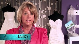 Watch Randy to the Rescue Season 2 Episode 7 - Chicago Online