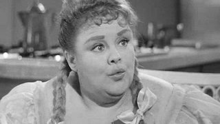 Watch The Beverly Hillbillies Season 2 Episode 17 - The Girl from Home Online