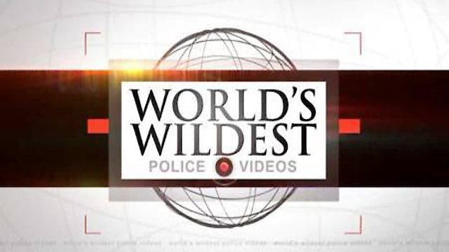 watch worlds wildest police videos online free