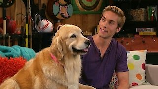 Watch I Didn't Do It Season 104 Episode 4 - Doggie Daddy Online