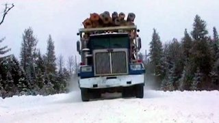 American Loggers Season 3 Episode 9