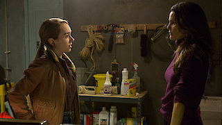 Watch The Americans Season 5 Episode 3 - The Midges Online