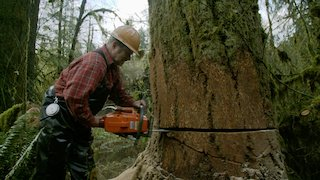 Ax Men Season 10 Episode 9