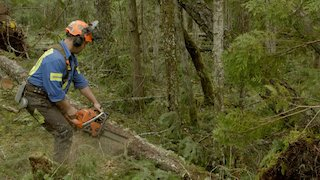 Ax Men Season 10 Episode 10