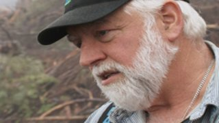Watch Ax Men Season 9 Episode 12 - Take This Log And Sh...Online