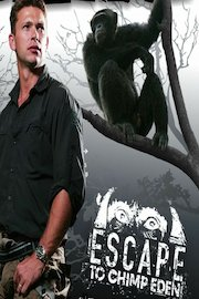 Escape to Chimp Eden