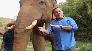 Watch Ocean Mysteries Season 4 Episode 21 - Asian Elephants Online