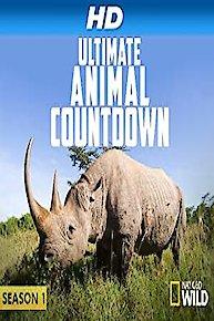 Ultimate Animal Countdown