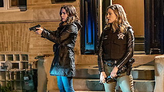 Watch Chicago PD Season 4 Episode 22 - Army of One Online