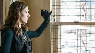 Watch Chicago PD Season 5 Episode 11 - Confidential Online