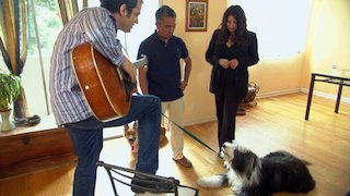 Watch Dog Whisperer Season 3 Episode 18 - Amber Snoopy and S... Online