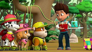 Watch Paw Patrol Season 8 Episode 6 - Pups Save The Mail/P...Online