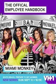 Miami Monkey