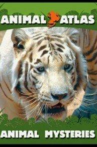 Animal Atlas: Animal Mysteries