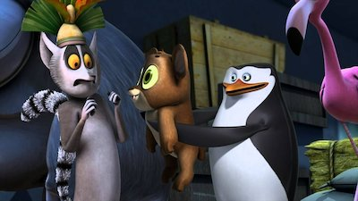 Watch The Penguins of Madagascar Online - Full Episodes of