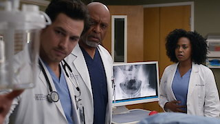 Watch Grey's Anatomy Season 13 Episode 21 - Don't Stop Me Now Online