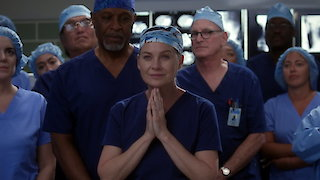 Watch Grey's Anatomy Season 14 Episode 7 - Who Lives Who Dies... Online