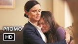 Watch Secrets and Lies - The Statement Online