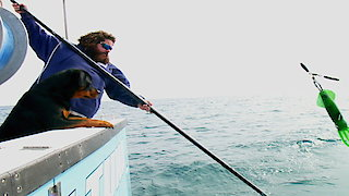 Wicked Tuna: North vs. South Season 1 Episode 6