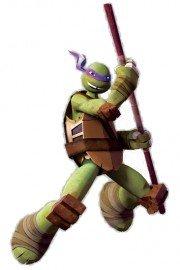 Teenage Mutant Ninja Turtles, Donnie: Brains and Brawn