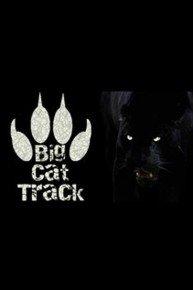 Big Cat Track