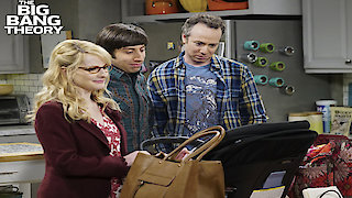 Watch The Big Bang Theory Season 10 Episode 21 - The Separation Agita...Online