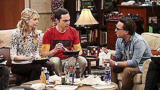 Watch The Big Bang Theory Season 10 Episode 24 - The Long Distance Di...Online