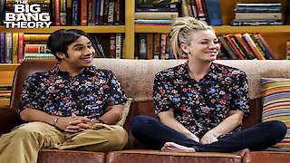 Watch The Big Bang Theory Season 10 Episode 19 - The Collaboration Fl...Online