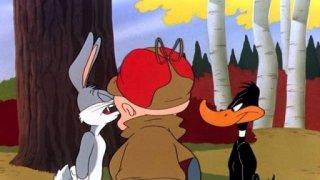 Watch Daffy Duck and Friends Season 1 Episode 2 - Duck Amuck