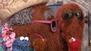 Watch Sesame Street Season 33 Episode 2 - Episode 3982 Online Now