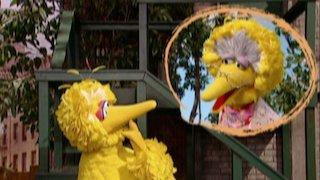 Watch Sesame Street Season 38 Episode 15 - 1,2,3 and 4