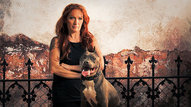 pitbull and parolees watch online free