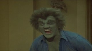 The Incredible Hulk Season 4 Episode 13