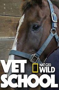 Vet School