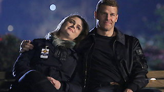 Watch Bones Season 12 Episode 12 - The End in the End Online