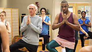 Watch Curb Your Enthusiasm Season 9 Episode 7 - Namaste Online